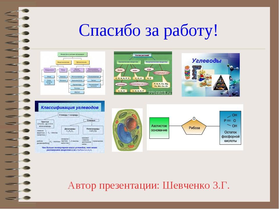 Спасибо за работу! Автор презентации: Шевченко З.Г.