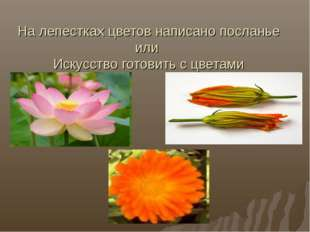 На лепестках цветов написано посланье или Искусство готовить с цветами