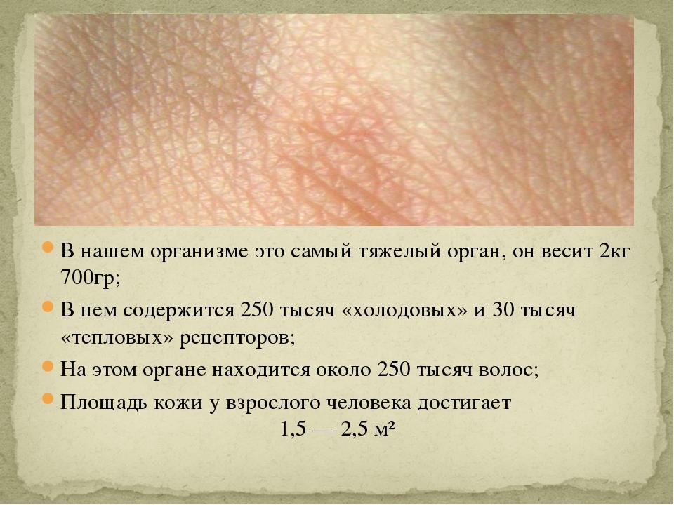В нашем организме это самый тяжелый орган, он весит 2кг 700гр; В нем содержит...