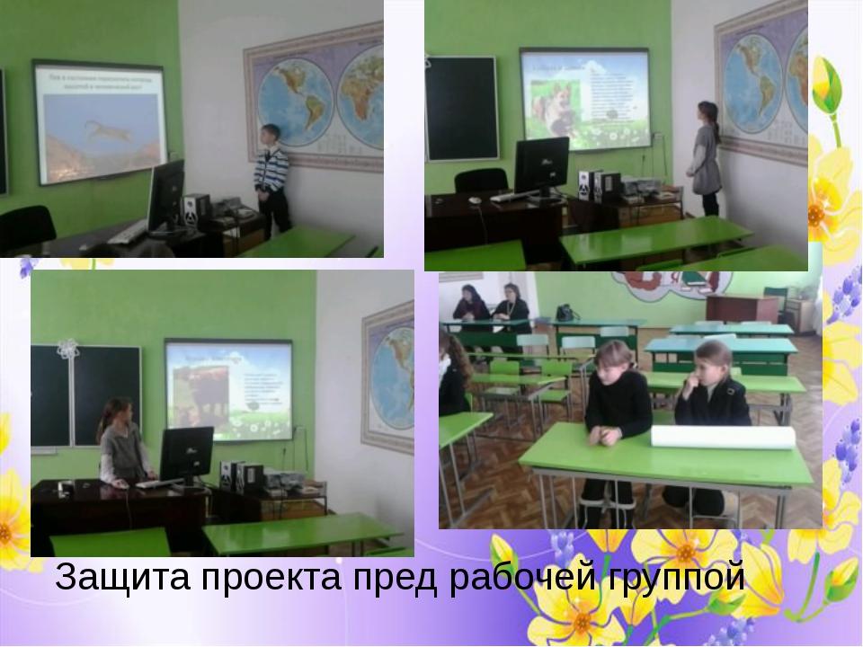 Подготовили два проекта: «Правила поведения в лесу» и «Правила дорожного движ...