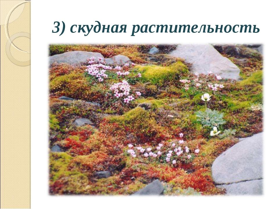 3) скудная растительность