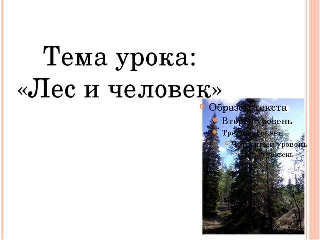 Роль леса в природе и жизни человека: Место отдыха человека Источник лекарств...