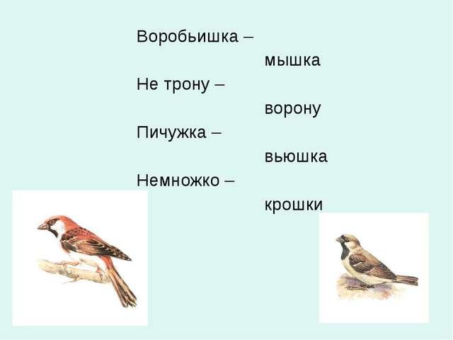 Воробьишка – мышка Не трону – ворону Пичужка – вьюшка Немножко – крошки