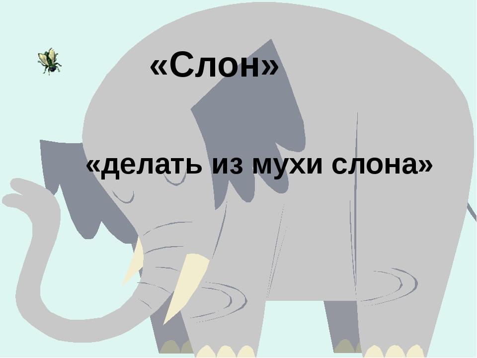 «Слон» «делать из мухи слона»