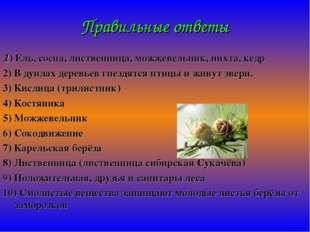 Правильные ответы 1) Ель, сосна, лиственница, можжевельник, пихта, кедр 2) В