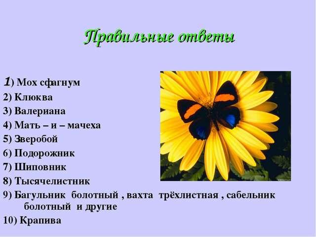 Правильные ответы 1) Мох сфагнум 2) Клюква 3) Валериана 4) Мать – и – мачеха...