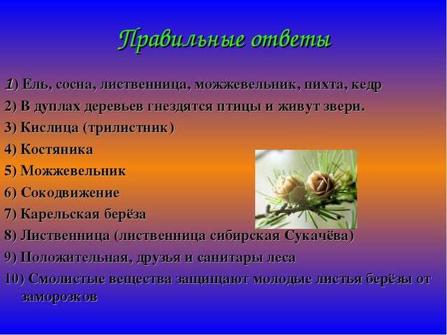 Правильные ответы 1) Ель, сосна, лиственница, можжевельник, пихта, кедр 2) В...