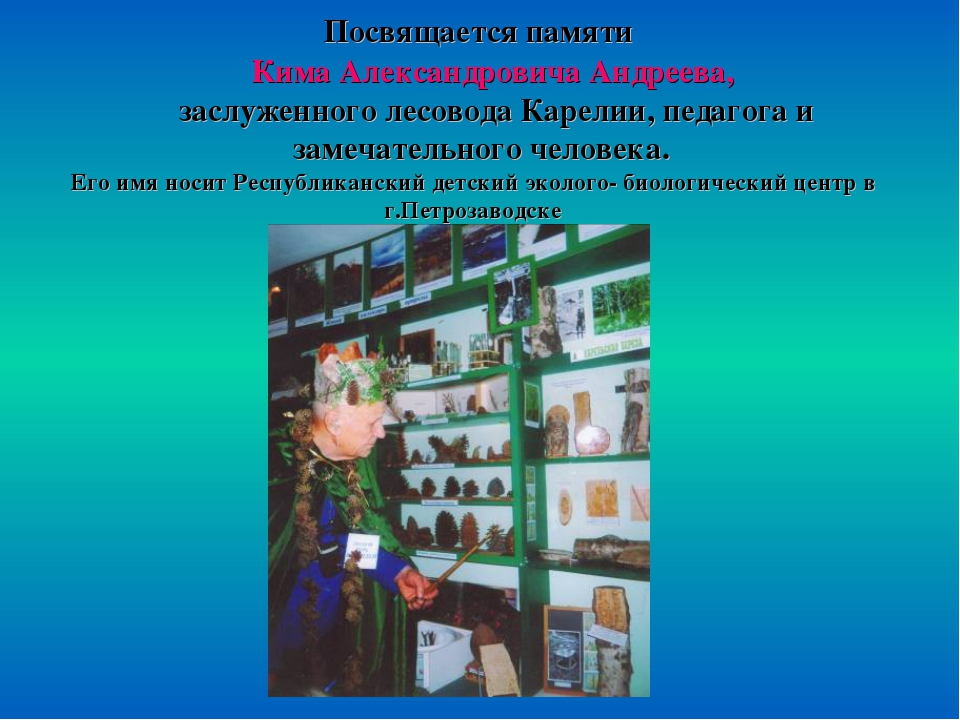 Посвящается памяти Кима Александровича Андреева, заслуженного лесовода Карел...