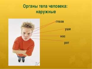 Органы тела человека: наружные глаза уши нос рот