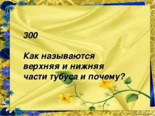 300 Как называются верхняя и нижняя части тубуса и почему?