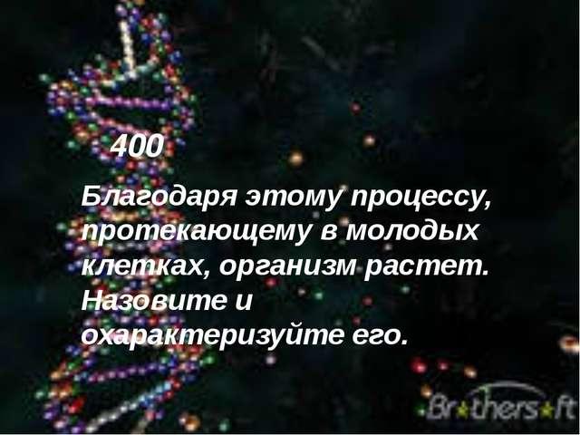 400 Благодаря этому процессу, протекающему в молодых клетках, организм растет...