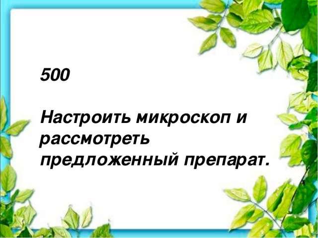 500 Настроить микроскоп и рассмотреть предложенный препарат.