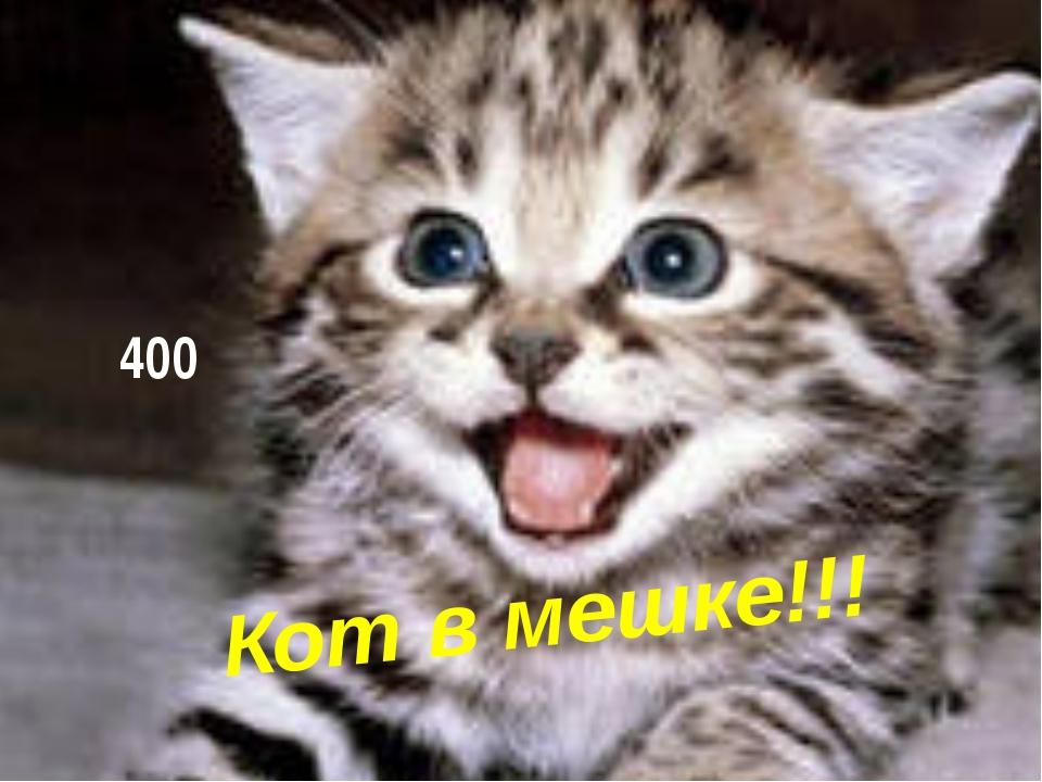 Кот в мешке!!! 400