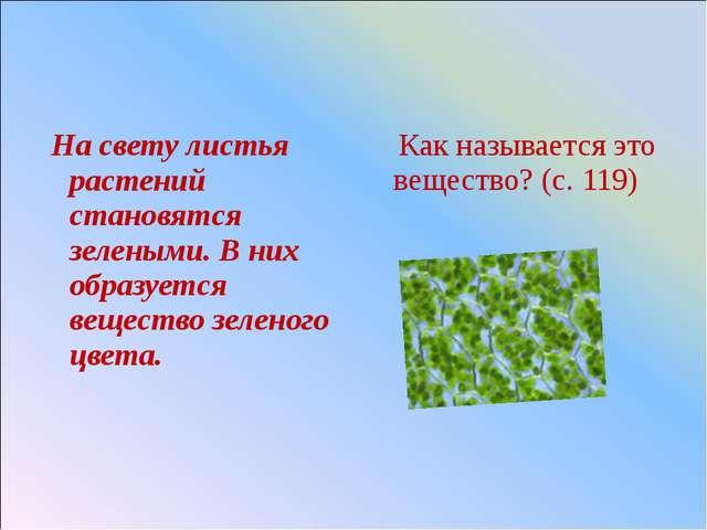 На свету листья растений становятся зелеными. В них образуется вещество зеле...