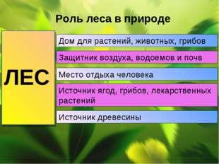 Роль леса в природе ЛЕС Дом для растений, животных, грибов Защитник воздуха,