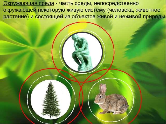 Окружающая среда - частьсреды, непосредственно окружающей некоторую живуюси...