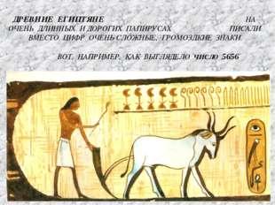 ДРЕВНИЕ ЕГИПТЯНЕ НА ОЧЕНЬ ДЛИННЫХ И ДОРОГИХ ПАПИРУСАХ ПИСАЛИ ВМЕСТО ЦИФР ОЧЕН