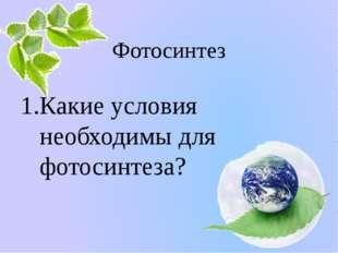 Фотосинтез Какие условия необходимы для фотосинтеза? Белозёрова Татьяна