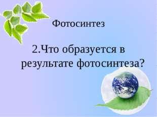 Фотосинтез 2.Что образуется в результате фотосинтеза? Белозёрова Татьяна
