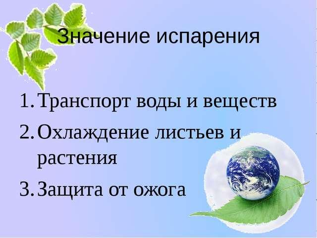 Значение испарения Транспорт воды и веществ Охлаждение листьев и растения Защ...