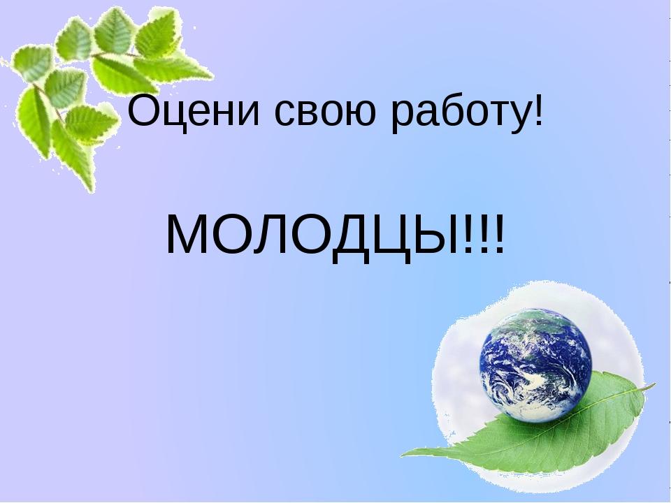 Оцени свою работу! МОЛОДЦЫ!!! Белозёрова Татьяна