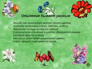 Опыление бывает разным Иногда оно происходит внутри одного цветка, А иногда н