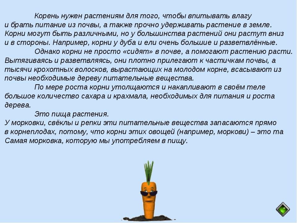 Корень нужен растениям для того, чтобы впитывать влагу и брать питание из по...