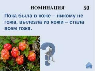 НОМИНАЦИЯ 10 Иван Грозный Архангельск основан по его указу в 1584 году вблизи