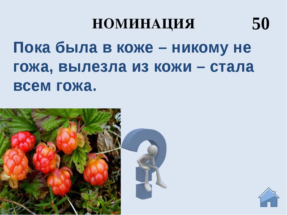 НОМИНАЦИЯ 10 Иван Грозный Архангельск основан по его указу в 1584 году вблизи...