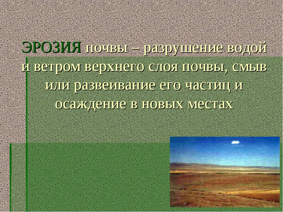 ЭРОЗИЯ почвы – разрушение водой и ветром верхнего слоя почвы, смыв или развеи...