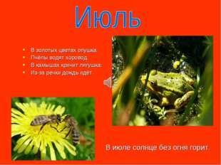 В золотых цветах опушка. Пчёлы водят хоровод. В камышах кричит лягушка: Из-за