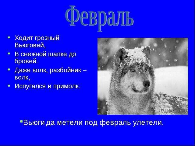 Ходит грозный Вьюговей, В снежной шапке до бровей. Даже волк, разбойник – вол...