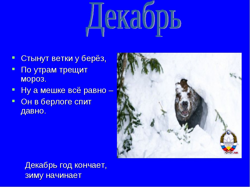 Стынут ветки у берёз, По утрам трещит мороз. Ну а мешке всё равно – Он в берл...