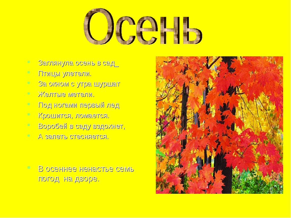 Заглянула осень в сад_ Птицы улетели. За окном с утра шуршат Желтые метели. П...