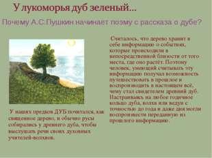 У наших предков ДУБ почитался, как священное дерево, и обычно русы собиралис