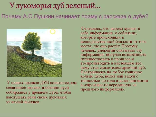У наших предков ДУБ почитался, как священное дерево, и обычно русы собиралис...