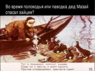 Во время половодья или паводка дед Мазай спасал зайцев?