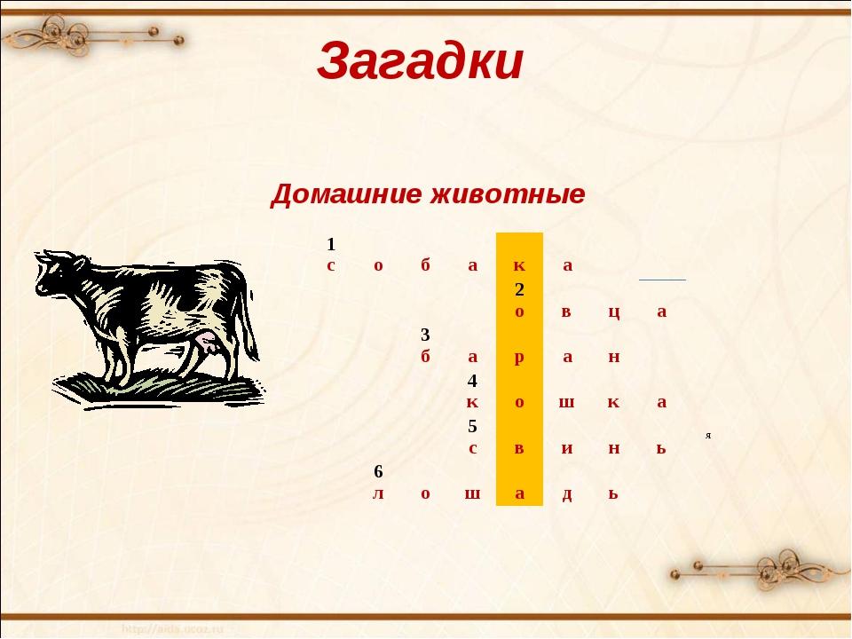 Загадки Домашние животные 1 с о б а к а 2 о в ц а 3 б а р...
