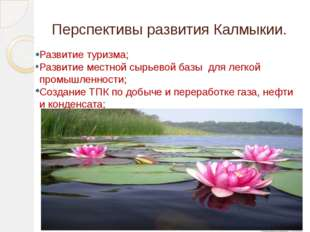 Перспективы развития Калмыкии. Развитие туризма; Развитие местной сырьевой ба