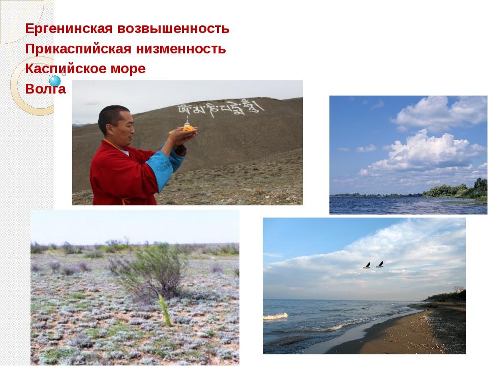 Ергенинская возвышенность Прикаспийская низменность Каспийское море Волга