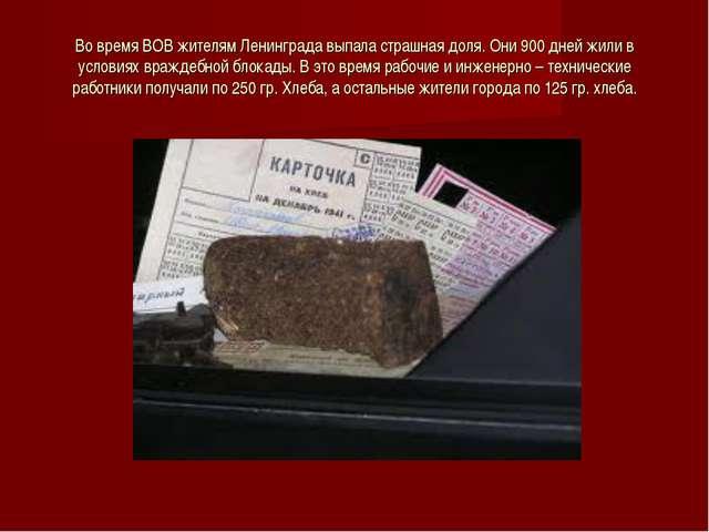 Во время ВОВ жителям Ленинграда выпала страшная доля. Они 900 дней жили в усл...
