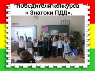 Победители конкурса « Знатоки ПДД». *