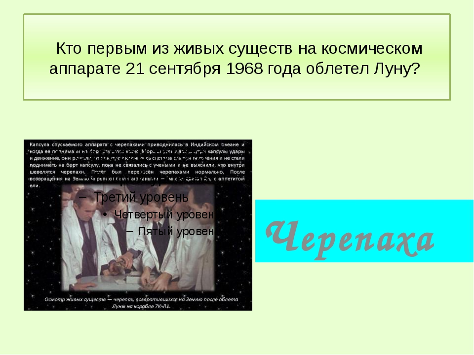 Кто первым из живых существ на космическом аппарате 21 сентября 1968 года об...