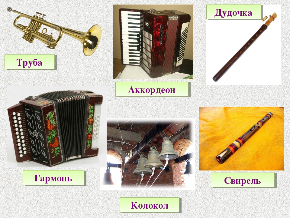 Труба Гармонь Аккордеон Колокол Дудочка Свирель