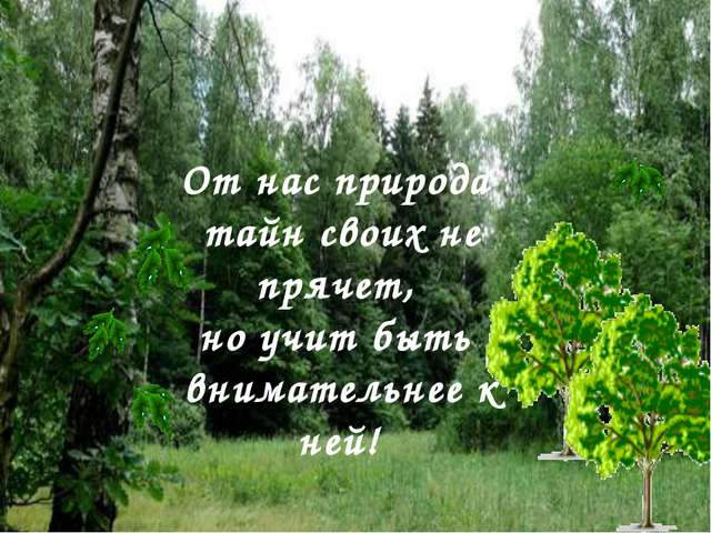 От нас природа тайн своих не прячет, но учит быть внимательнее к ней!