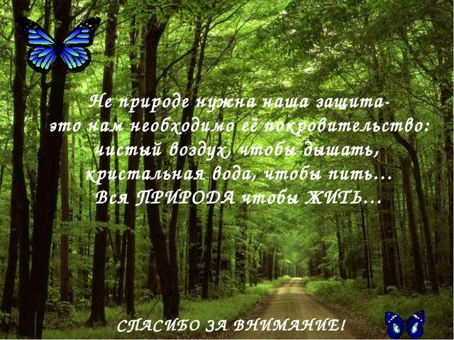 СПАСИБО ЗА ВНИМАНИЕ! Не природе нужна наша защита- это нам необходимо её покр...
