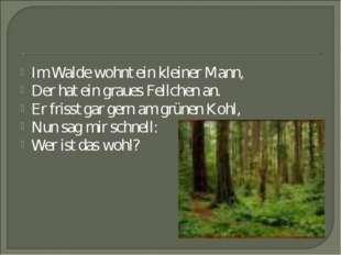 Im Walde wohnt ein kleiner Mann, Der hat ein graues Fellchen an. Er frisst ga