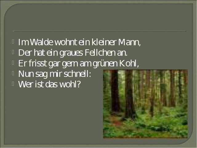 Im Walde wohnt ein kleiner Mann, Der hat ein graues Fellchen an. Er frisst ga...
