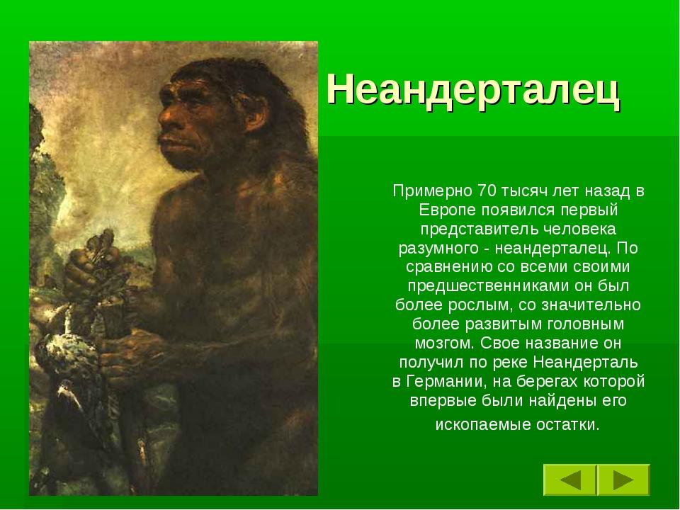 Неандерталец Примерно 70 тысяч лет назад в Европе появился первый представите...