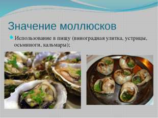 Значение моллюсков Использование в пищу (виноградная улитка, устрицы, осьмино